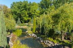 石头围拢的一条浅,浅小河 在绿色灌木和树附近 图库摄影