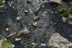 石头在河的水中 库存照片