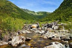石头在Ziarska谷中间的山河在斯洛伐克 免版税库存图片