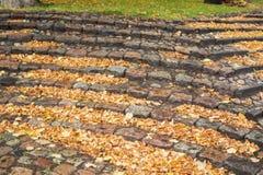 石头楼梯与许多秋叶的 免版税库存照片