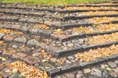 石头楼梯与许多秋叶的 免版税库存图片