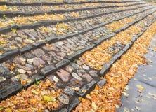 石头楼梯与许多秋叶的 图库摄影