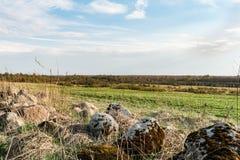 石头用青苔、石头和干草盖以一个绿色领域和森林为背景 免版税图库摄影