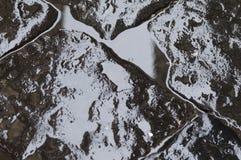 石头的黑湿纹理 免版税图库摄影