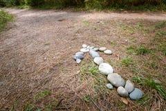 石头箭头在地面上说谎在森林里,显示移动方向沿道路的 图库摄影
