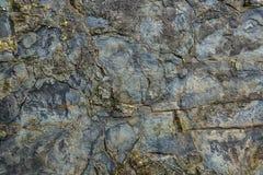 石头老湿墙壁的纹理  库存照片