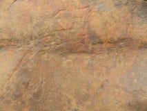 石头 免版税图库摄影