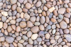 石小卵石纹理或石头小卵石背景 内部外部装饰设计的石小卵石 库存图片