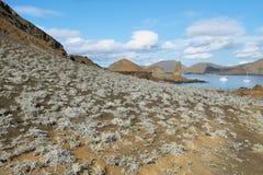 石峰岩石和周围风景  库存照片