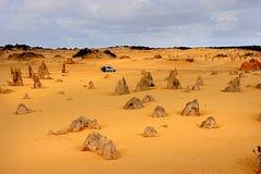 石峰沙漠 免版税库存图片