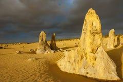 石峰,西部澳大利亚,在晚上光, Nambung公园的石峰 免版税库存照片