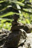 石平衡在森林关闭  免版税库存照片