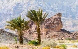 石形成在地质自然公园Timna,以色列 库存照片