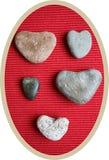 石心脏 库存图片