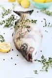 石斑鱼用新鲜的草本和柠檬 库存图片