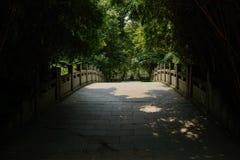 石曲拱桥梁在竹子树荫下在晴朗的夏天中午 免版税库存照片