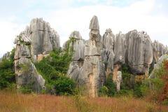 石林向云南的森林国家公园,中国扔石头 库存照片