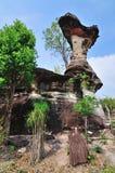 石柱子喜欢蘑菇 图库摄影