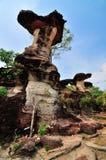 石柱子喜欢蘑菇 免版税库存照片