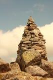 石标比利牛斯 库存图片