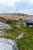 石标Galver,查寻对山顶 免版税图库摄影