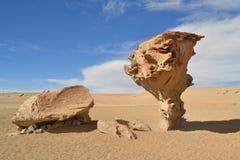 石树岩层在沙漠 免版税库存图片