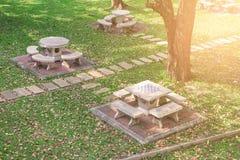 石桌和长凳顶视图设置了在大树下 库存照片