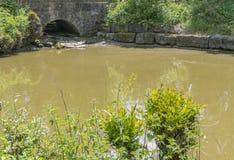 石桥梁和池塘 免版税图库摄影