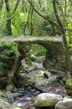 石桥梁在森林里 免版税库存图片
