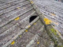 石棉屋顶 免版税库存图片