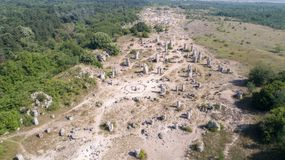 石森林鸟瞰图在瓦尔纳,保加利亚, Pobiti kamani,岩石现象附近的 免版税图库摄影