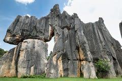石森林,云南,中国 库存照片