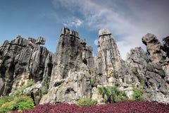 石森林,云南,中国 库存图片