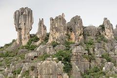 石森林,云南,中国 免版税库存图片