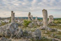 石森林(Pobiti Kamani)在保加利亚 免版税图库摄影
