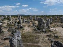 石森林(Pobiti Kamani)在瓦尔纳,地质现象附近 免版税库存图片