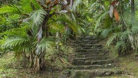 石楼梯在皮库岛做Marumbi /PR-巴西 免版税库存照片