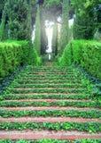 石楼梯,长满与草在公园 被整理的灌木和树在公园 雕象露天 免版税库存照片