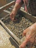 石榴石星形 库存照片