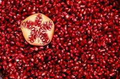 石榴红色种子 库存图片