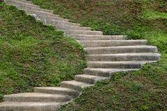 石步台阶在庭院里 免版税库存照片