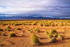 石沙漠惊人的自然视图有山峰和bea的 库存照片