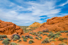 石沙漠 图库摄影