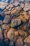 石河底通过透明水 库存照片