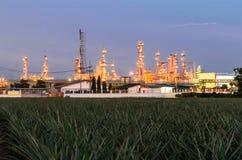 石油化工厂 库存图片
