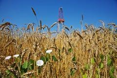 石油工业和农业 免版税库存图片