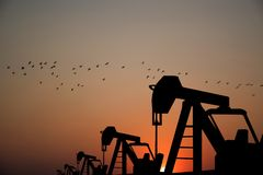 石油的石油工业设备在日落背景中 库存图片