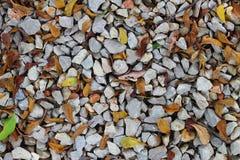 石渣和叶子背景 免版税库存图片