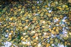 石渣在水中 免版税图库摄影