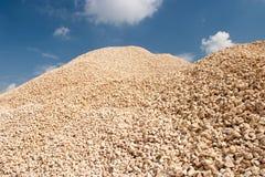 石渣堆猎物 免版税库存图片